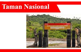 Taman-nasional-fungsi-tujuan-jenis-keunggulan-distribusi